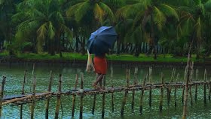 Kerala govt gears up to tackle monsoon-related diseases