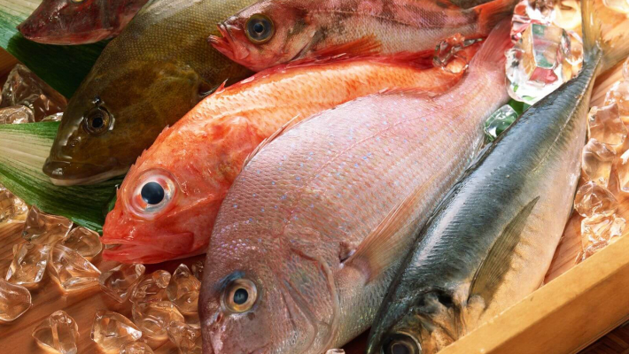 Diet rich in fish helps fight asthma: Study