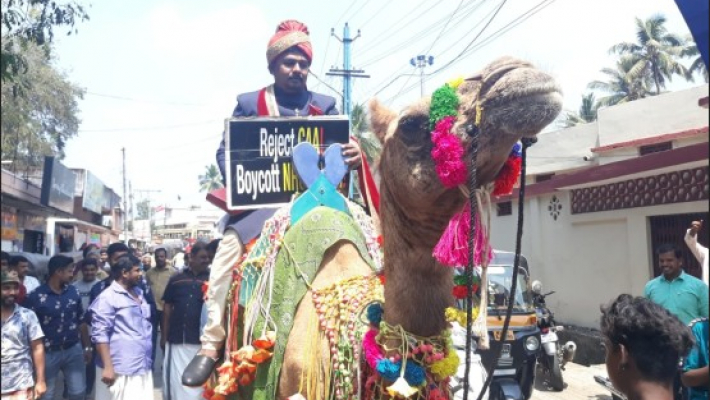 Anti-CAA protest: Kerala groom arrives on camel, gifts Constitution