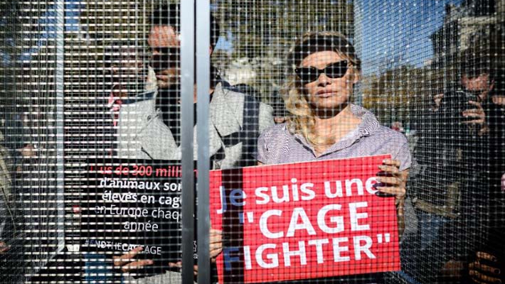 Pamela Anderson gets behind bars in Paris protest against farm animal abuse