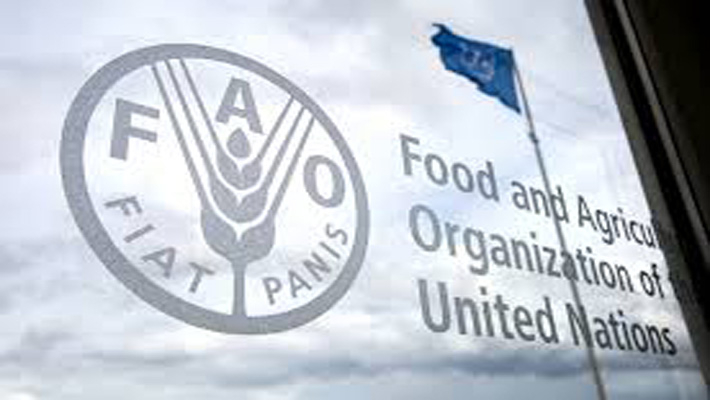 Sustainable agriculture is fundamental to food security, need to bring seed diversity back: India