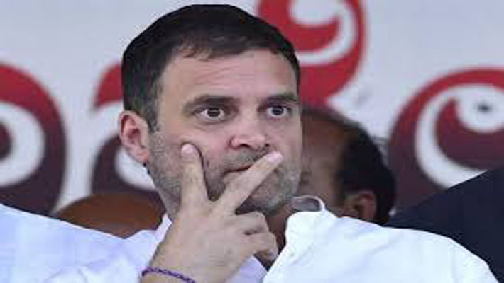 Rahul Gandhi to pay 2 day visit to Wayanad from Oct 19 to review pandemic situation
