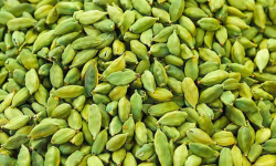 Spices Board to revert to old system of 1 cardamom auction a day