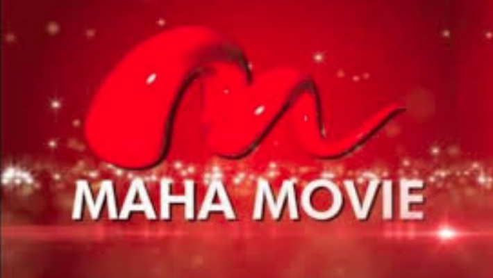 Maha Movie channel CEO held in copyright violation case