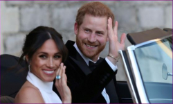 Over 29 million watched royal wedding on TV