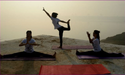 Govt to take foreign Yoga professionals to Kerala
